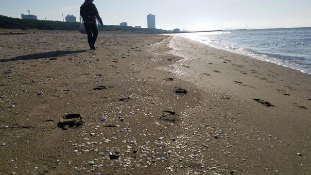 浜辺をウォーキング
